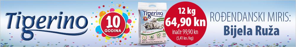 Tigerino rođendan