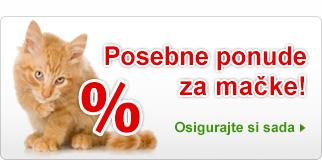 Posebne ponude za mačke